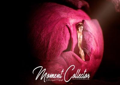 Projekt – Erotische Fotomontage